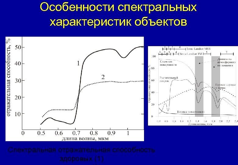 Особенности спектральных характеристик объектов Спектральная отражательная способность здоровых (1)