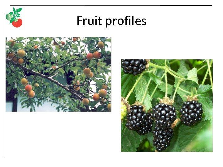 Fruit profiles