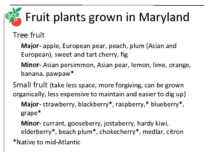 Fruit plants grown in Maryland Tree fruit Major- apple, European pear, peach, plum (Asian