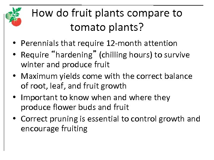 How do fruit plants compare to tomato plants? • Perennials that require 12 -month