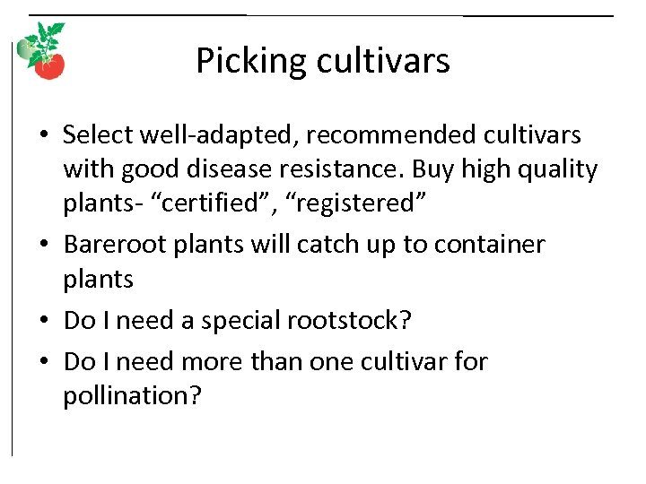 Picking cultivars • Select well-adapted, recommended cultivars with good disease resistance. Buy high quality