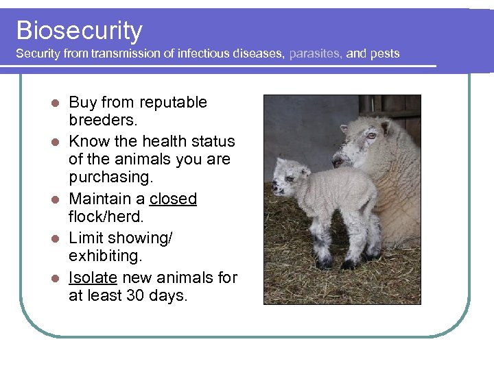 Biosecurity Security from transmission of infectious diseases, parasites, and pests l l l Buy