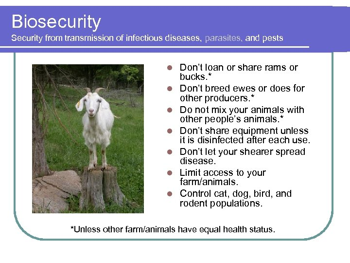 Biosecurity Security from transmission of infectious diseases, parasites, and pests l l l l