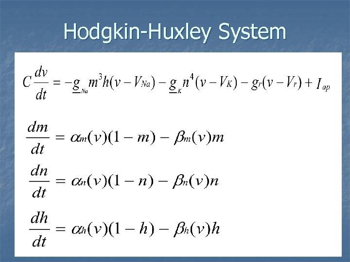 Hodgkin-Huxley System