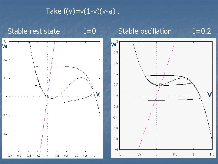 Take f(v)=v(1 -v)(v-a). Stable rest state I=0 Stable oscillation I=0. 2 w w v
