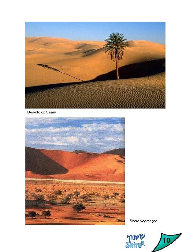 Deserto do Saara vegetação 10