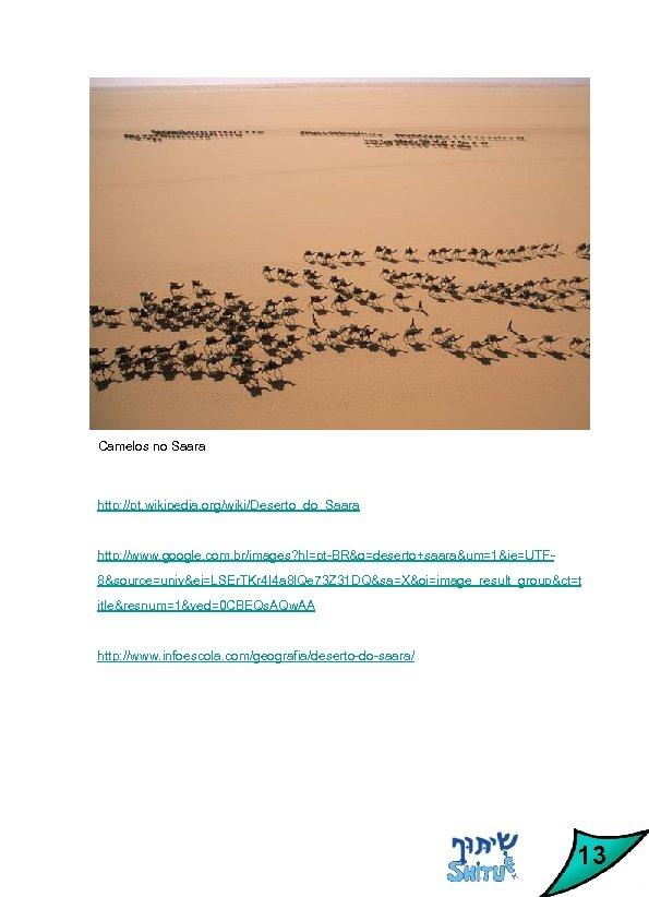 Camelos no Saara http: //pt. wikipedia. org/wiki/Deserto_do_Saara http: //www. google. com. br/images? hl=pt-BR&q=deserto+saara&um=1&ie=UTF 8&source=univ&ei=LSEr.