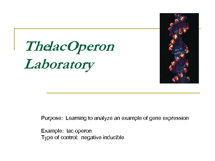 Thelac. Operon Laboratory Purpose: Learning to analyze an example of gene expression Example: lac