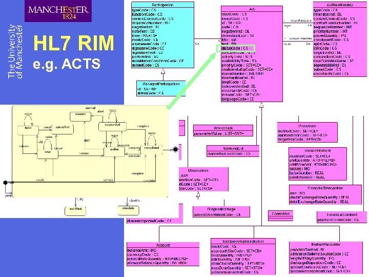 HL 7 RIM e. g. ACTS