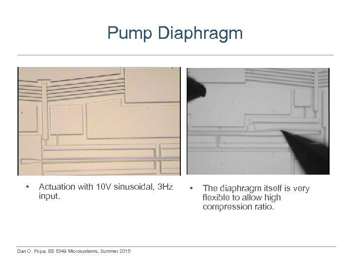 Pump Diaphragm • Actuation with 10 V sinusoidal, 3 Hz input. Dan O. Popa,