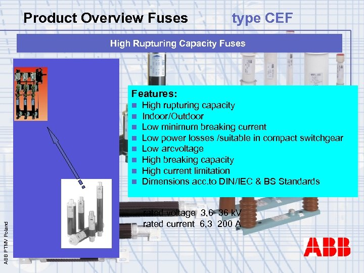 Product Overview Fuses type CEF High Rupturing Capacity Fuses Features: ABB PTMV Poland n