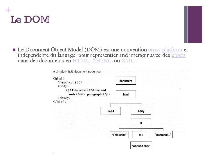 + Le DOM Le Document Object Model (DOM) est une convention cross-platform et independente