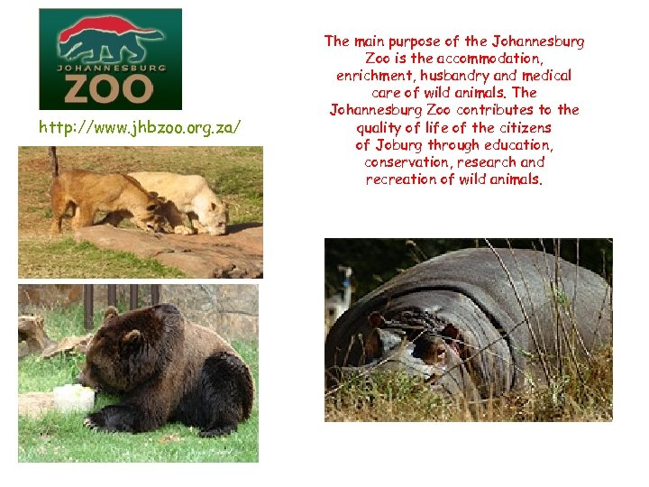http: //www. jhbzoo. org. za/ The main purpose of the Johannesburg Zoo is the