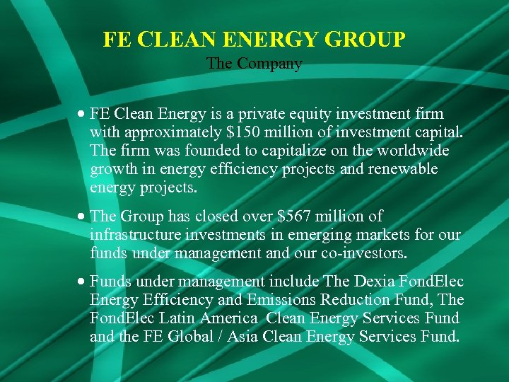 FE CLEAN ENERGY GROUP The Company · FE Clean Energy is a private equity