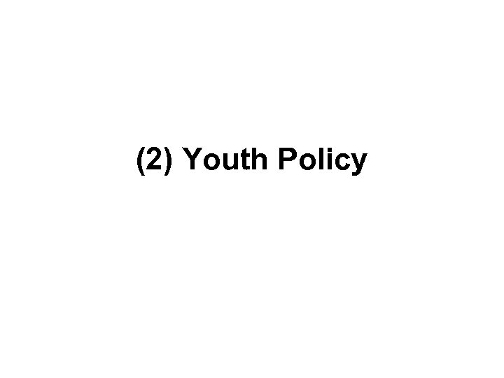 (2) Youth Policy