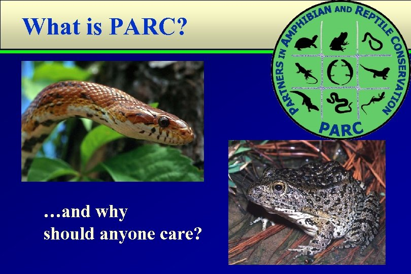 What is PARC? …and why should anyone care?