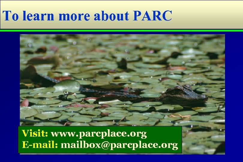 To learn more about PARC Visit: www. parcplace. org E-mail: mailbox@parcplace. org