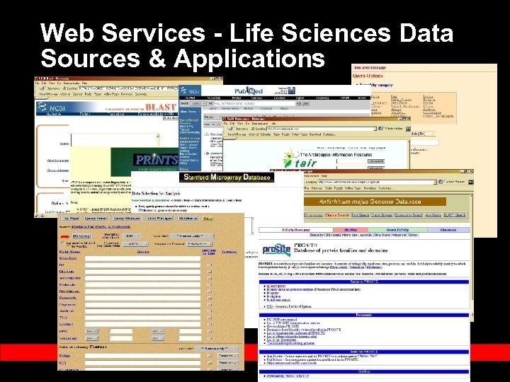 Web Services - Life Sciences Data Sources & Applications