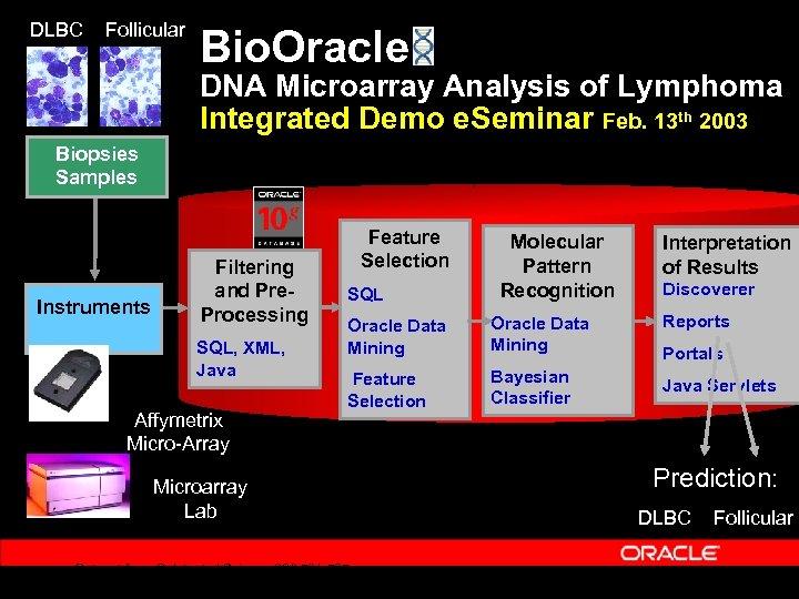 DLBC Follicular Bio. Oracle DNA Microarray Analysis of Lymphoma Integrated Demo e. Seminar Feb.