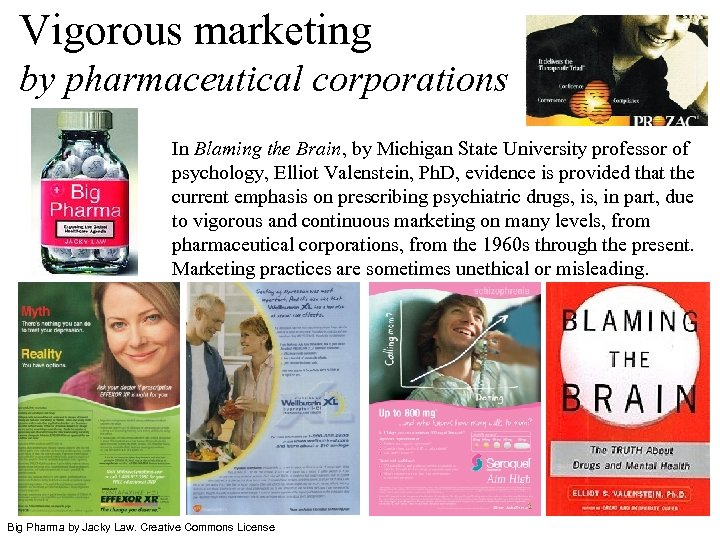 Vigorous marketing by pharmaceutical corporations In Blaming the Brain, by Michigan State University professor
