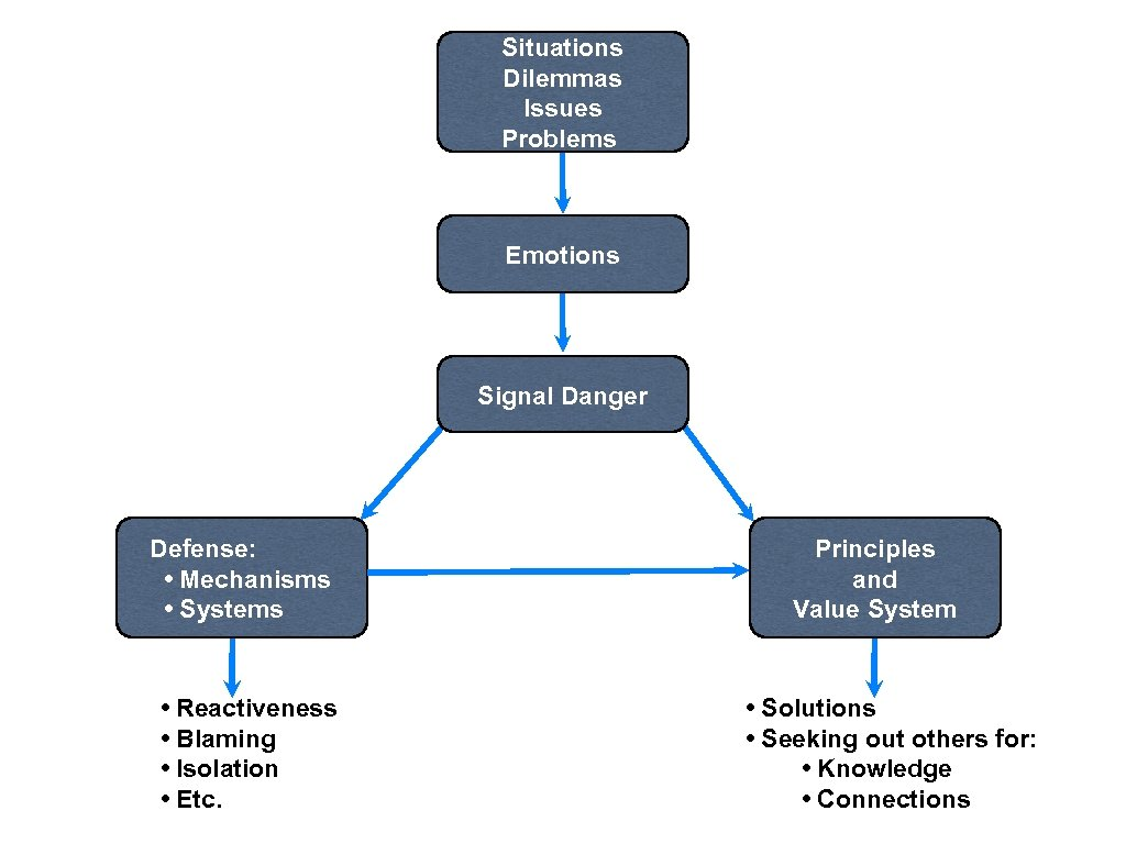 Situations Dilemmas Issues Problems Emotions Signal Danger Defense: • Mechanisms • Systems • Reactiveness