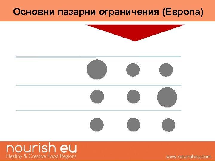Основни пазарни ограничения (Европа)