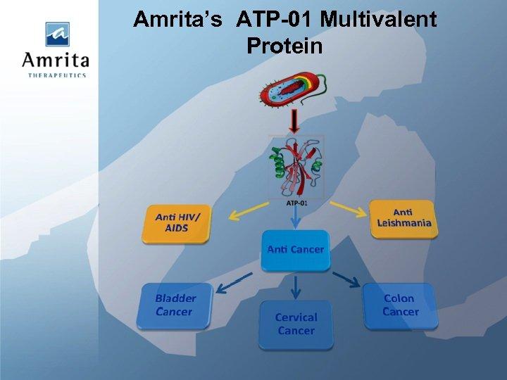 Amrita's ATP-01 Multivalent Protein