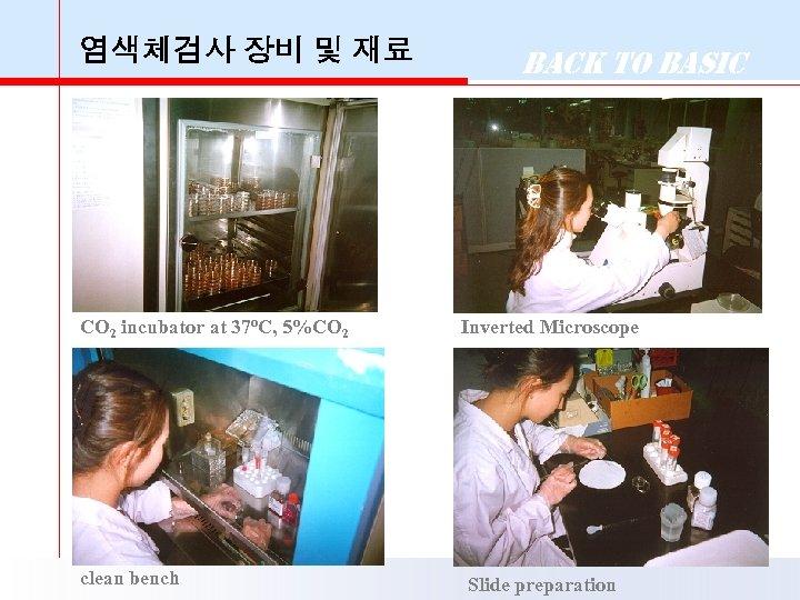 염색체검사 장비 및 재료 CO 2 incubator at 37 o. C, 5%CO 2 clean