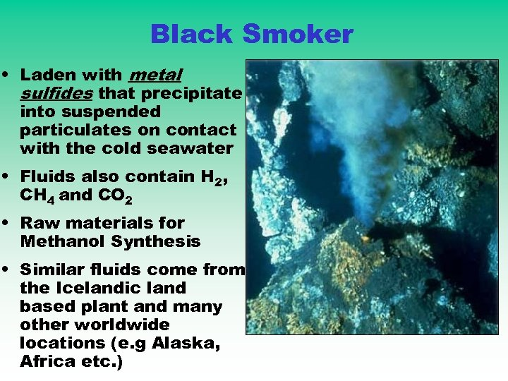Black Smoker • Laden with metal sulfides that precipitate into suspended particulates on contact