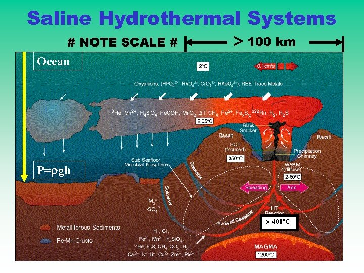 Saline Hydrothermal Systems # NOTE SCALE # Ocean 100 km P= gh 4000 C