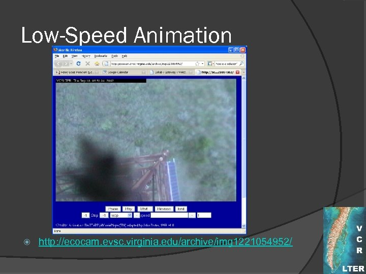 Low-Speed Animation http: //ecocam. evsc. virginia. edu/archive/img 1221054952/