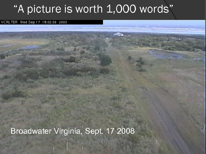 """""""A picture is worth 1, 000 words"""" Broadwater Virginia, Sept. 17 2008"""
