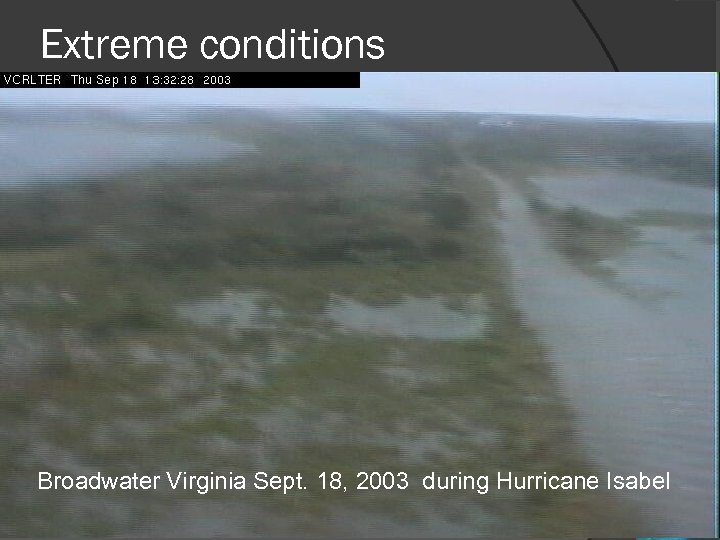 Extreme conditions Broadwater Virginia Sept. 18, 2003 during Hurricane Isabel