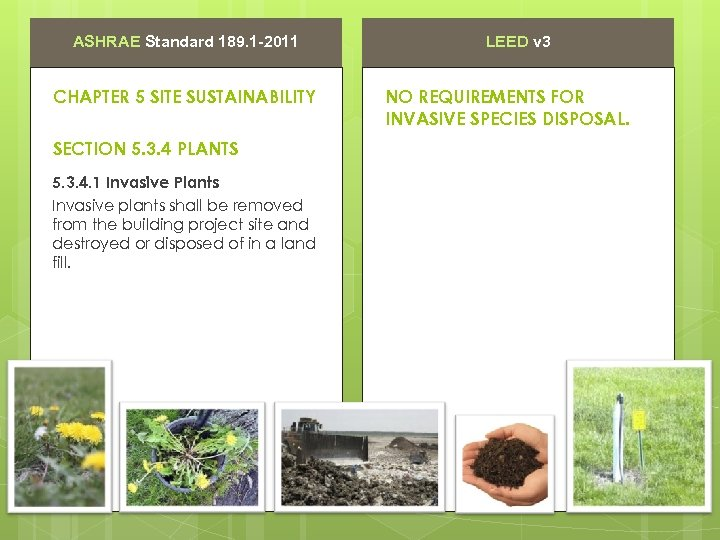 ASHRAE Standard 189. 1 -2011 CHAPTER 5 SITE SUSTAINABILITY SECTION 5. 3. 4 PLANTS