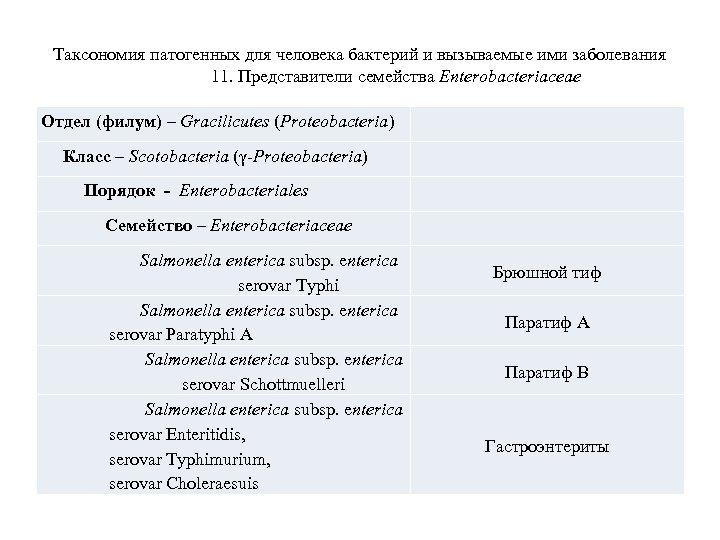 Таксономия патогенных для человека бактерий и вызываемые ими заболевания 11. Представители семейства Enterobacteriaceae Отдел
