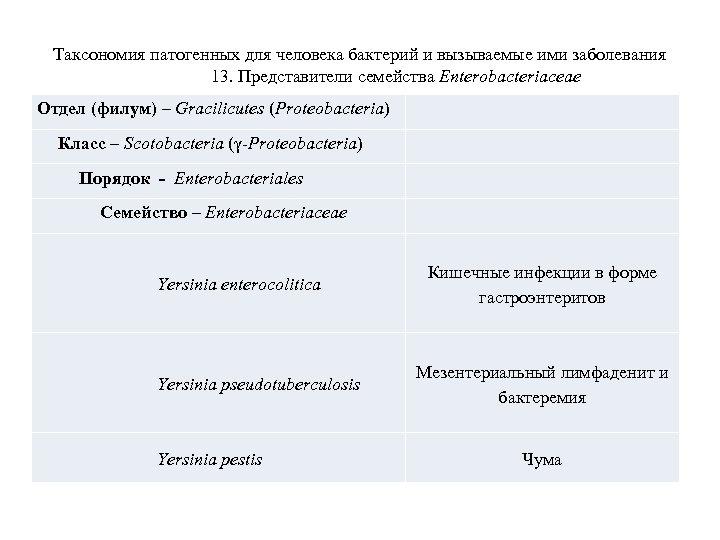 Таксономия патогенных для человека бактерий и вызываемые ими заболевания 13. Представители семейства Enterobacteriaceae Отдел