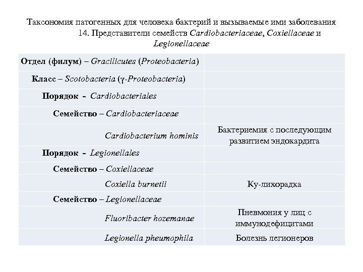 Таксономия патогенных для человека бактерий и вызываемые ими заболевания 14. Представители семейств Cardiobacteriaceae, Coxiellaceae