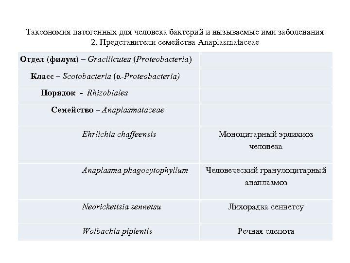 Таксономия патогенных для человека бактерий и вызываемые ими заболевания 2. Представители семейства Anaplasmataceae Отдел