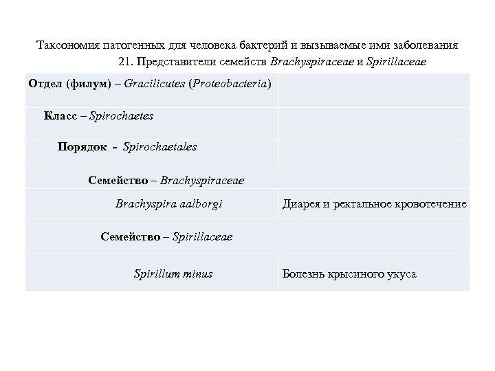 Таксономия патогенных для человека бактерий и вызываемые ими заболевания 21. Представители семейств Brachyspiraceae и