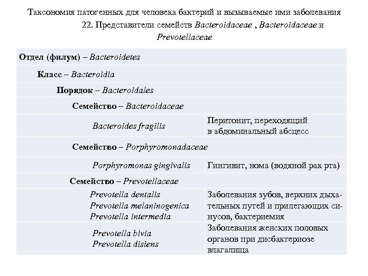 Таксономия патогенных для человека бактерий и вызываемые ими заболевания 22. Представители семейств Bacteroidaceae ,