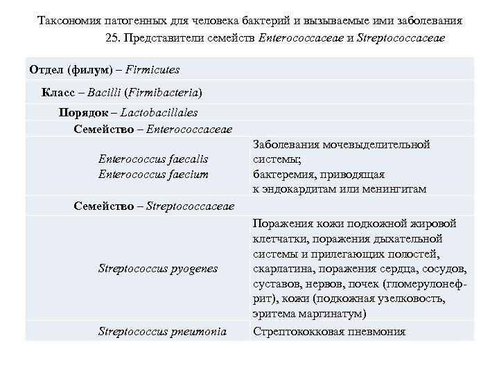 Таксономия патогенных для человека бактерий и вызываемые ими заболевания 25. Представители семейств Enterococcaceae и