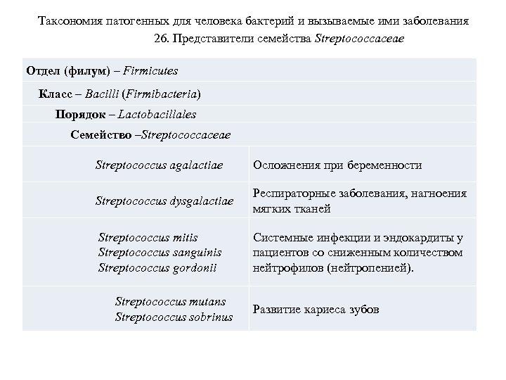 Таксономия патогенных для человека бактерий и вызываемые ими заболевания 26. Представители семейства Streptococcaceae Отдел