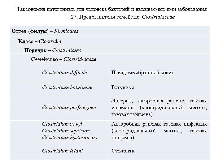 Таксономия патогенных для человека бактерий и вызываемые ими заболевания 27. Представители семейства Clostridiaceae Отдел