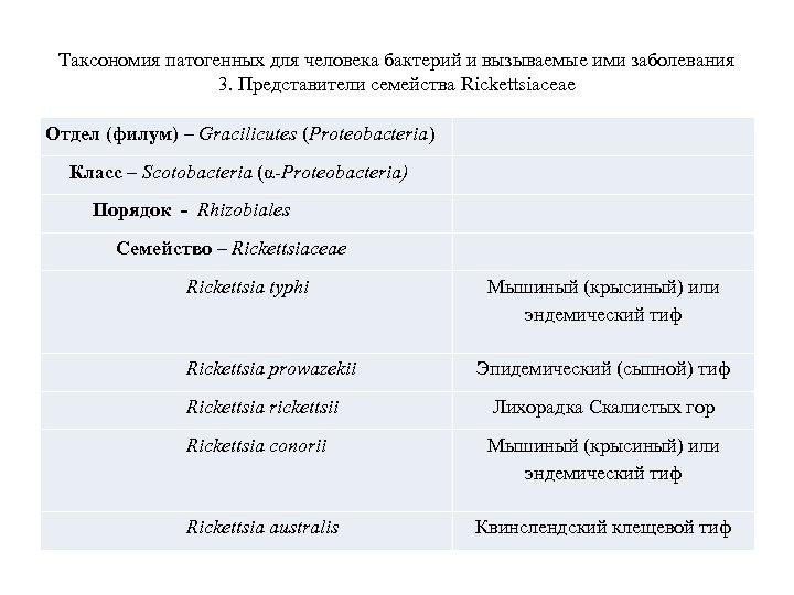 Таксономия патогенных для человека бактерий и вызываемые ими заболевания 3. Представители семейства Rickettsiaceae Отдел