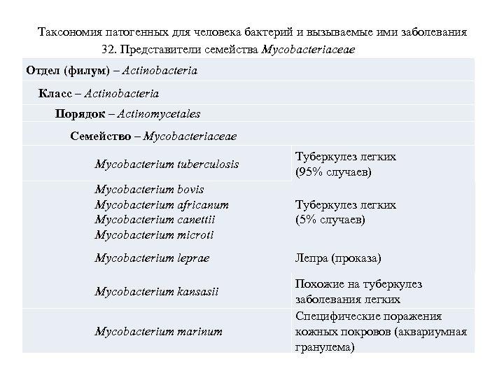 Таксономия патогенных для человека бактерий и вызываемые ими заболевания 32. Представители семейства Mycobacteriaceae Отдел