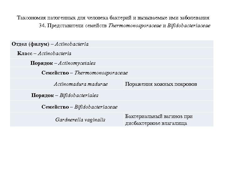 Таксономия патогенных для человека бактерий и вызываемые ими заболевания 34. Представители семейств Thermomonosporaceae и