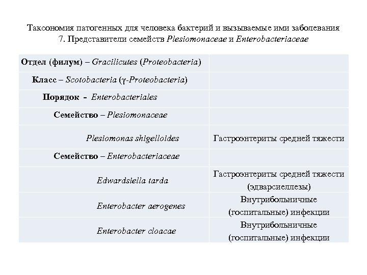 Таксономия патогенных для человека бактерий и вызываемые ими заболевания 7. Представители семейств Plesiomonaceae и