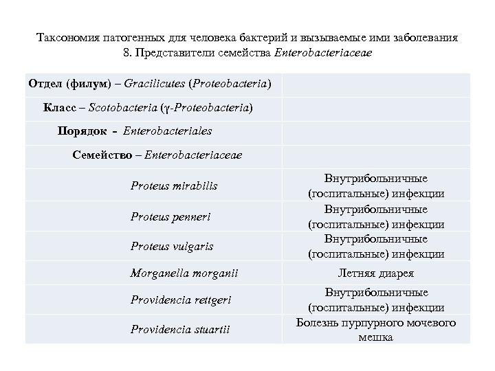 Таксономия патогенных для человека бактерий и вызываемые ими заболевания 8. Представители семейства Enterobacteriaceae Отдел