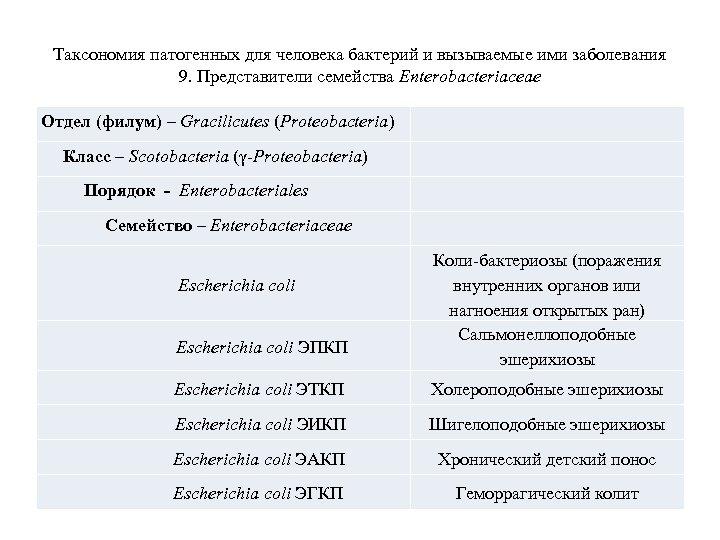 Таксономия патогенных для человека бактерий и вызываемые ими заболевания 9. Представители семейства Enterobacteriaceae Отдел