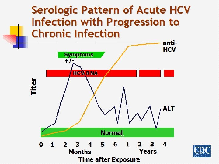 Serologic Pattern of Acute HCV Infection with Progression to Chronic Infection anti. HCV Symptoms